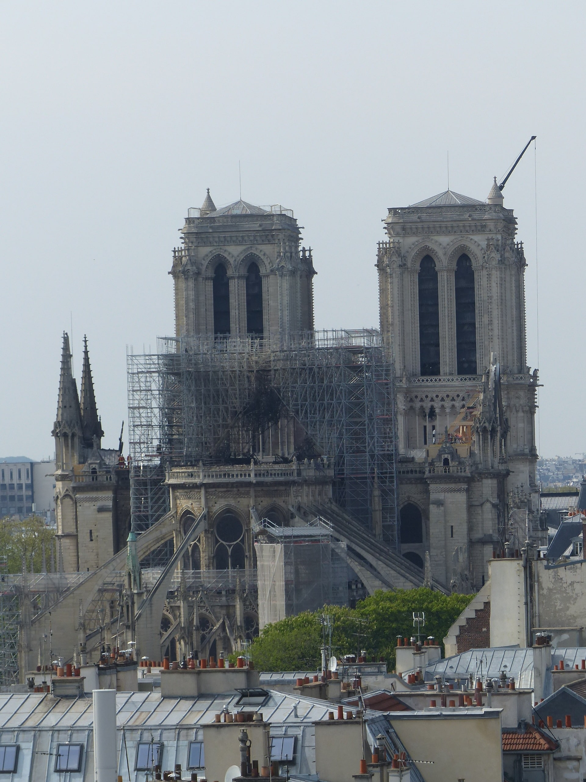 Notre-Dame 01